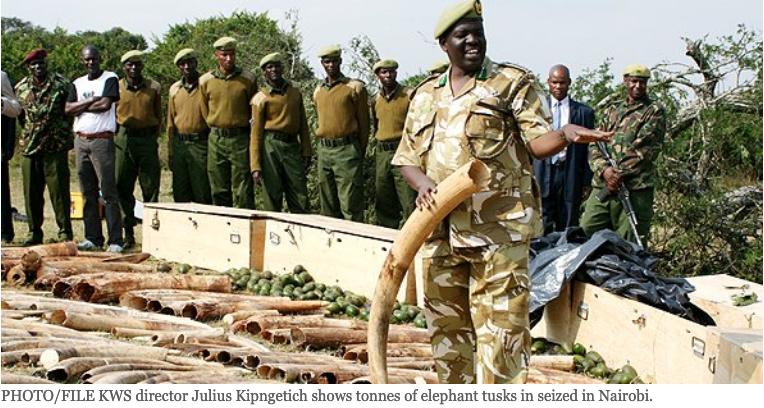 #11. CF 2305/2011 – 2160 kg Ivory Seizure Jomo Kenyatta International Airport