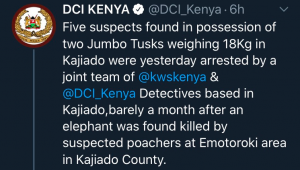 Five Arrested With 18 kg Ivory in Kajiado