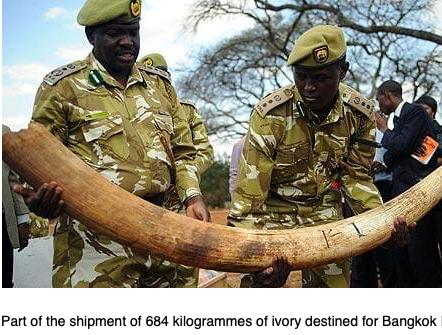September 2009: Jomo Kenyatta IA – 1169 kg seized heading to Thailand