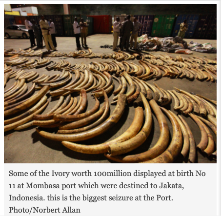 #14. CF 417/2013 – Over 3 tonnes of ivory bound for China seized in Mombasa
