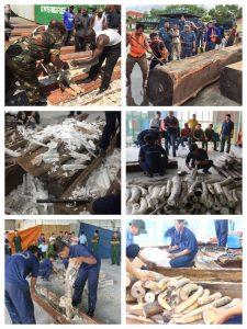 "The ""Enterprise"", the Burundi stockpile, and other ivory behind the Extradition."